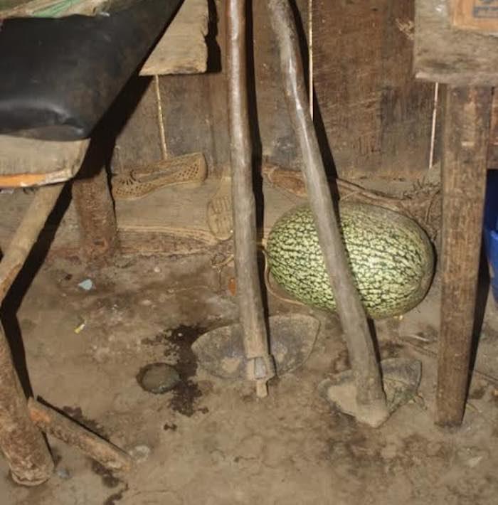 El interior de la humilde morada de la familia Atlahua Temoxtle. Foto: BlogExpediente.