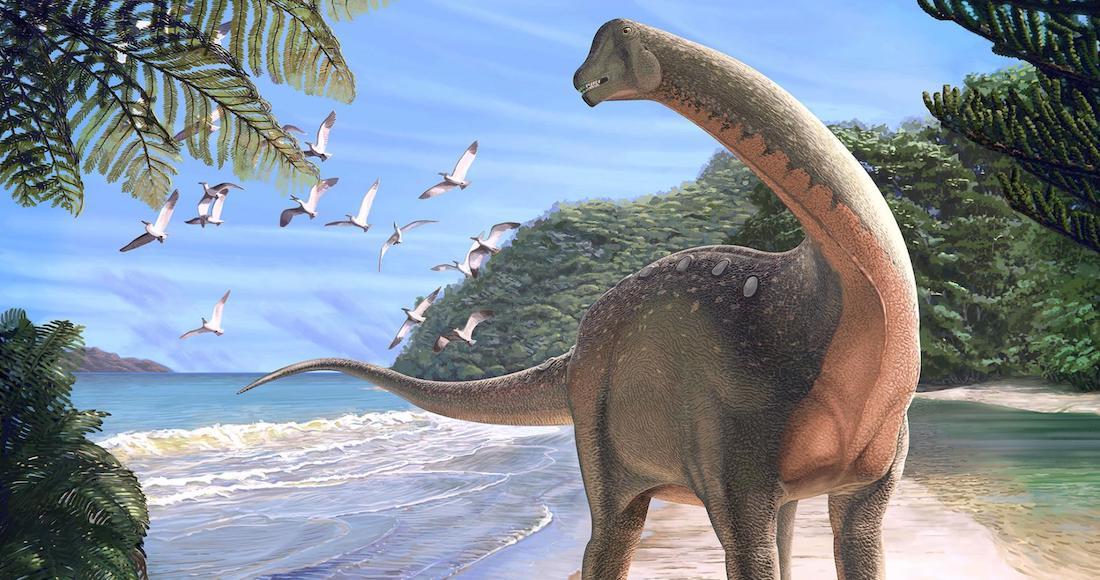 1 95 - Con 140 millones de años, el fósil de titanosaurio más antiguo del mundo es hallado en Argentina