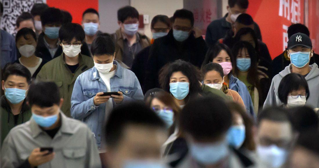 china cierra uno de los hospitales que construyo en 10 dias en wuhan - ¿Los murciélagos dan pistas para prevenir otra pandemia? En Brasil, científicos estudian la situación