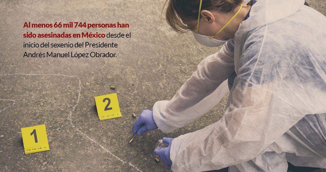 photo5048728696785053935 - PERFIL | Rosa Icela Rodríguez, el comodín de AMLO para afrontar creciente inseguridad en México