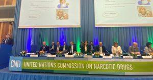 La Comisión de Estupefacientes había aplazado desde marzo la decisión del uso terapéutico del cannabis. Foto: Luis Lidón, Archivo EFE
