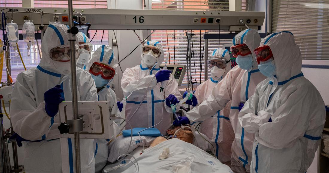 """se 2212 12 - El suero equino hiperinmune de Argentina """"demostró eficacia y seguridad"""" en COVID-19 grave"""