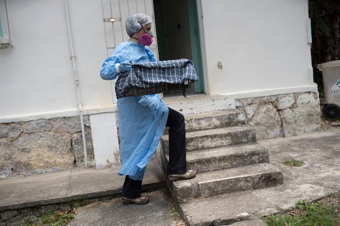 se 0301 14 - ¿Los murciélagos dan pistas para prevenir otra pandemia? En Brasil, científicos estudian la situación