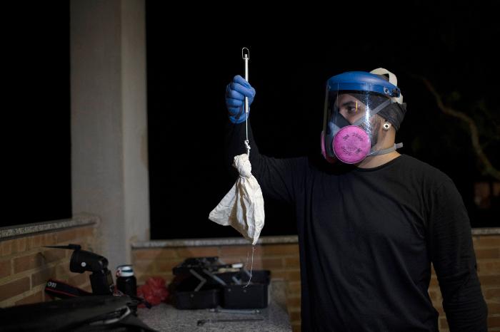 se 0301 22 - ¿Los murciélagos dan pistas para prevenir otra pandemia? En Brasil, científicos estudian la situación