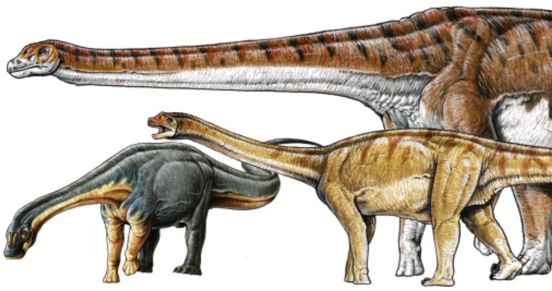 se 3001 10 - Con 140 millones de años, el fósil de titanosaurio más antiguo del mundo es hallado en Argentina