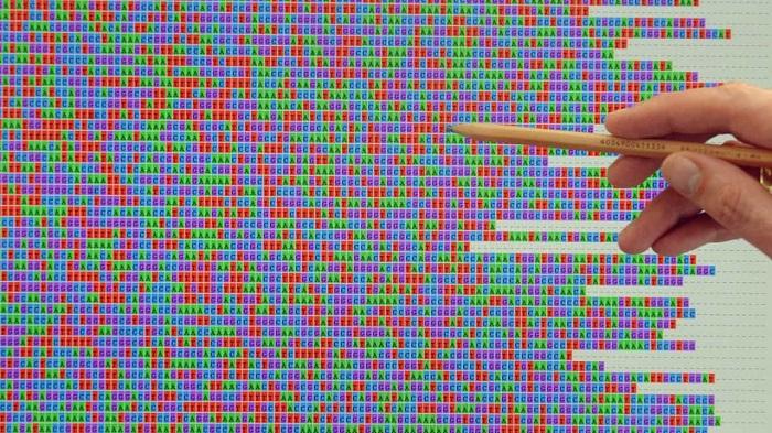 """12632816 - 20 años del """"primer borrador"""" del genoma humano, el """"libro de la vida"""" que abrió una era médica y biológica"""