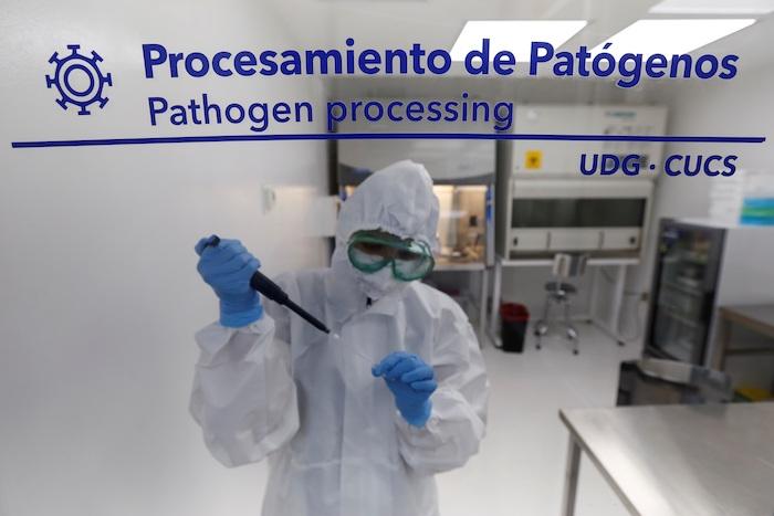 Investigadores trabajan con muestras de la COVID-19 ayer, en el Laboratorio de Diagnóstico en Enfermedades Emergentes y Reemergentes (LaDEER) de la Universidad de Guadalajara (UDG), estado de Jalisco (México).