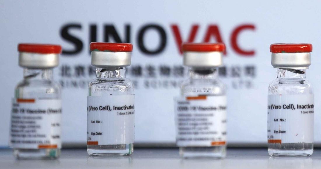 befunky collage 1 15 - La vacuna de Sinovac previene 67% de los contagios de COVID y evita 80% de las muertes, revela estudio