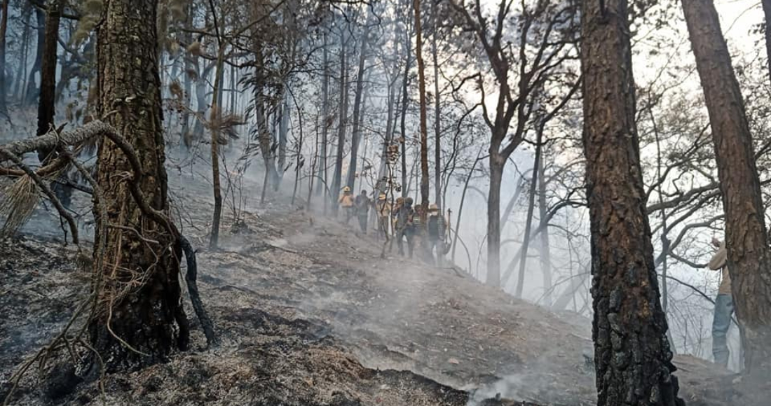 se 1204 10 - FOTOS: Autoridades usan helicópteros para tratar de sofocar el incendio en Tepoztlán, Morelos