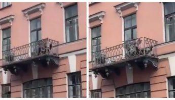 pelea-balcon