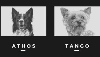 athos-tango