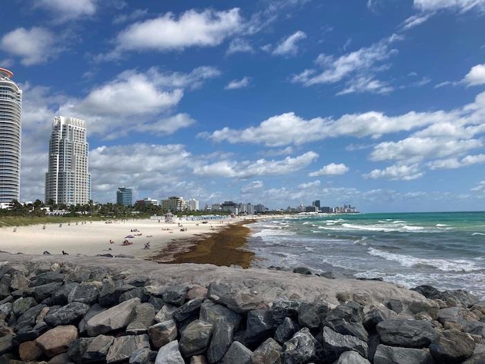 Gran saturación de sargazo en la playa de Miami Beach, Florida, Estados Unidos, el pasado 17 de mayo.
