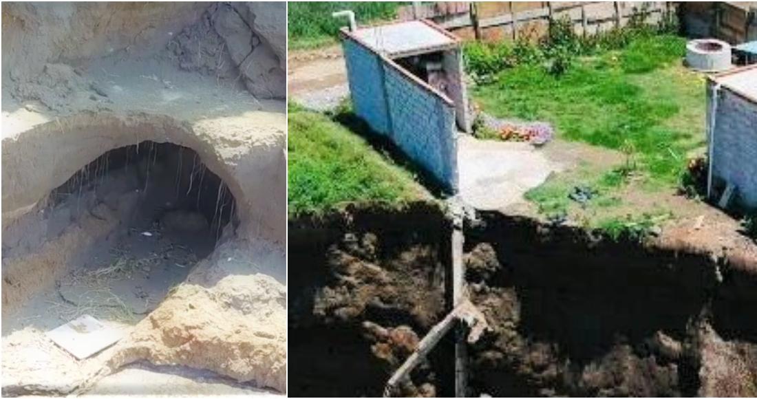 socavon puebla - VIDEO muestra a dos perros que cayeron al socavón de Puebla