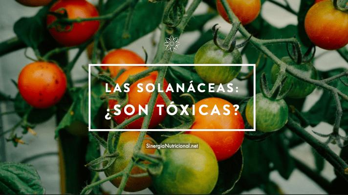 Las Solanáceas: ¿son tóxicas?