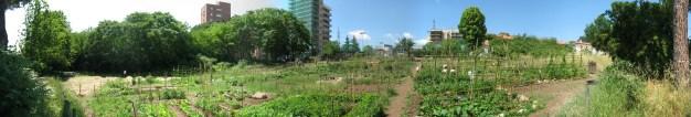 Orto Giardino di Aguzzano - After