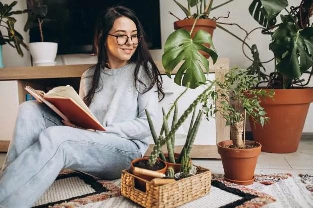 macam macam tanaman indoor