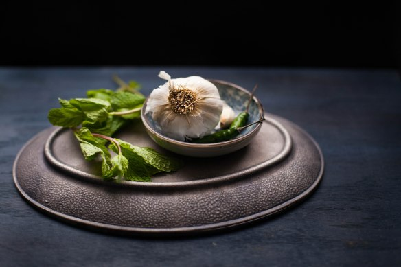 Sinfully Spicy : Garlic,Chilies& Mint