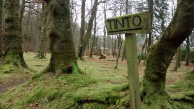 Wiston Lodge grounds - Tinto sign