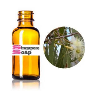 Where to Buy Eucalyptus Oil in Singapore - SingaporeSoap com