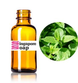 Pure Spearmint Essential Oil
