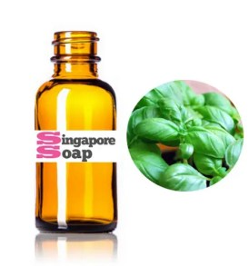 Sweet Basil Essential Oil (100% Pure & Therapeutic Grade)