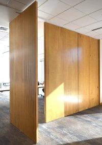 Pivot Hinge Door  Non-warping patented wooden pivot door ...