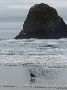 oregon-coast__crescent-beach_22