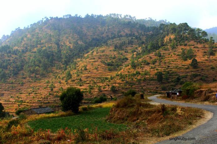 Drive through the scenic Saur Village