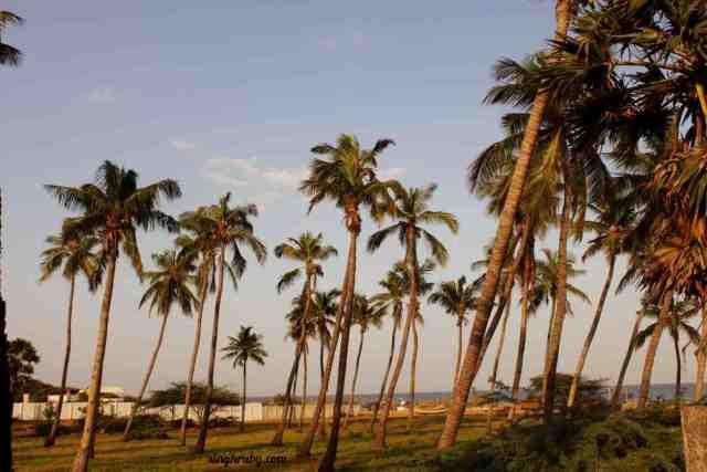 Feels like Goa in Pondicherry