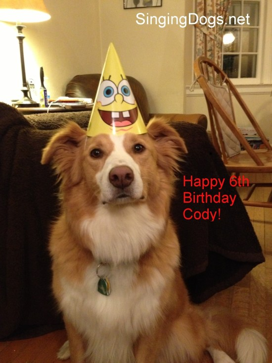 Birthday Ecards Dogs Singing ~ Happy birthday song archives singing dogs