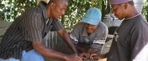 supply chain coffee haiti