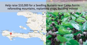 crops destroyed by Hurricane Matthew, Haiti