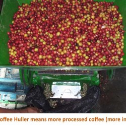 Hulling coffee cherries