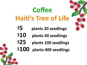reforest Haiti, coffee