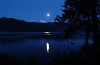 silvery-moon