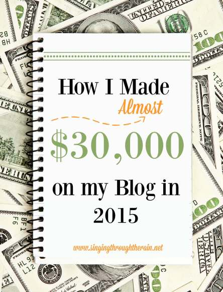 How I Made Almost $30,000 on my blog in 2015