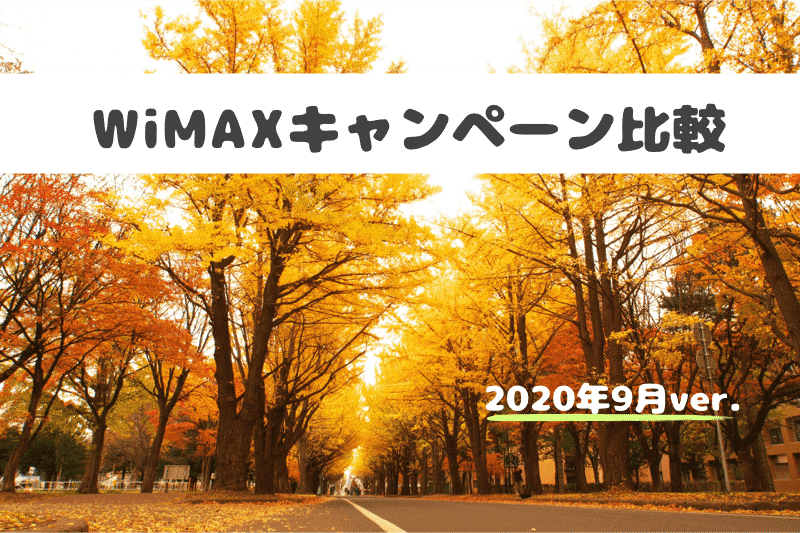WiMAX9月