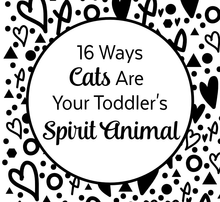 16 Ways Cats Are Your Toddler's Spirit Animal