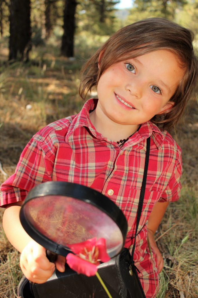 Fun Camping Crafts And Activities For Kids