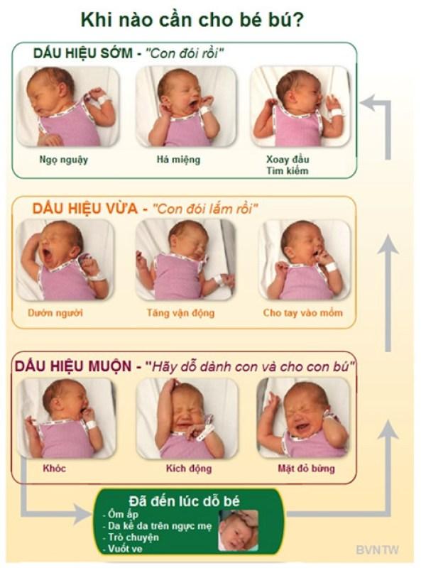 Trẻ sơ sinh cần bú sữa mẹ bao nhiêu là đủ