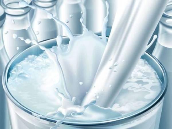 Phụ nữ mang thai có nhất thiết phải uống sữa bầu?