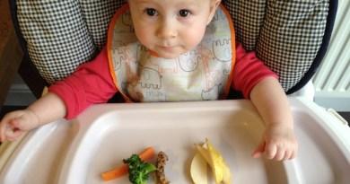 Những nguyên tắc giúp mẹ cho bé ăn dặm BLW nhẹ tênh