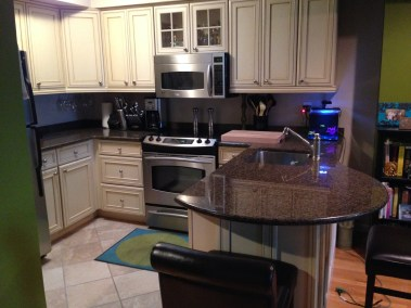300 Hudson St #15 - kitchen 2