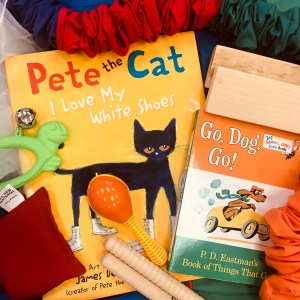 Cats n' Dogs Curricula – Single Lesson