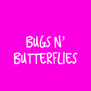 Bugs and Butterflies – Single Lesson