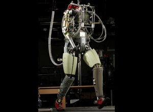 DARPA's Robotic Challenge, where robots will perform tasks at a simulated catastrophe site, is sure to attract humanoid robots like Petman.