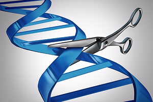crispr-targets-cancer-first-human-trial-2