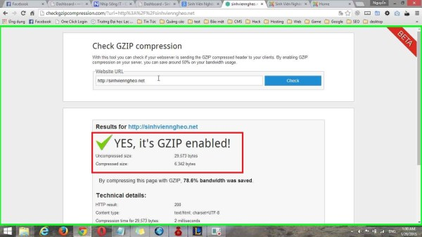 YES, it's GZIP enabled!