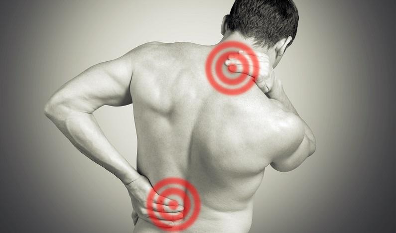 High Intensity Zone Spine
