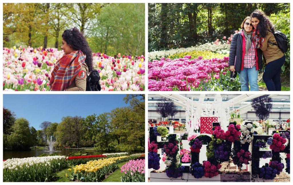 Tulipanes de Keukenhof y Haarlem